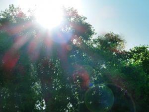【乾燥肌の原因】紫外線