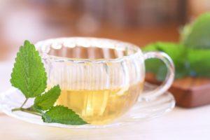 花粉症の対策になる飲み物のレモンバーム