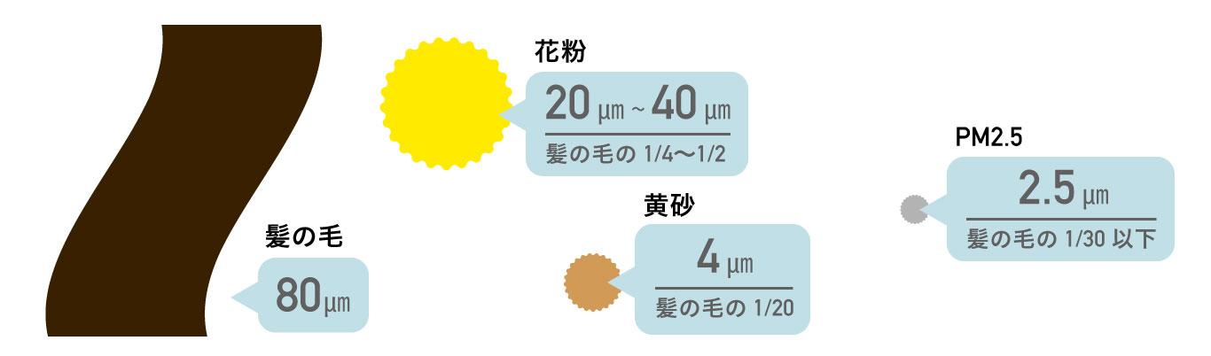 PM2.5の大きさ