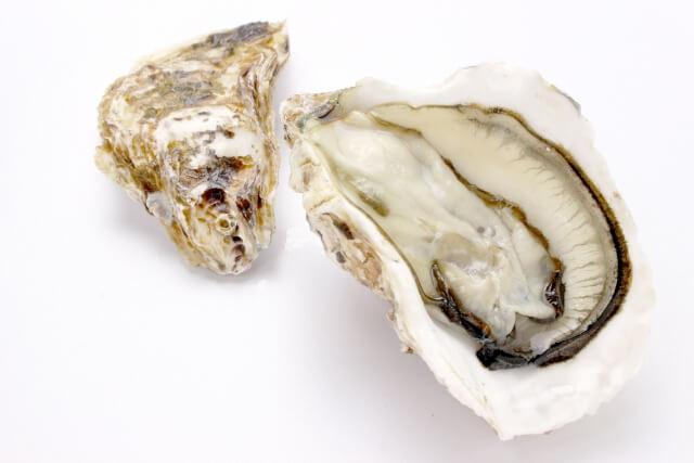 生理中の悩みを解消する食べ物⑦:牡蠣(かき)