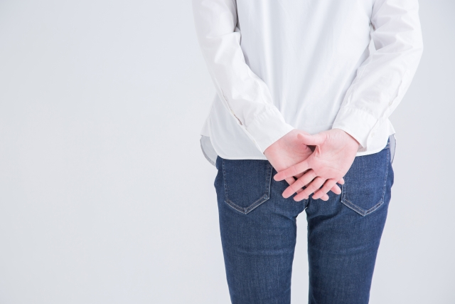 痔の原因は二足歩行にあります