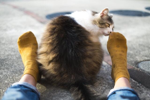 【足が臭い】足が臭い原因は大きく分けて4つある!