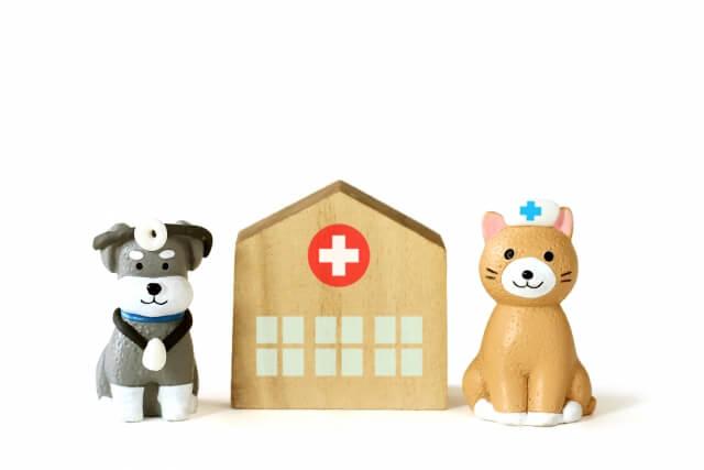 【風邪を治す】風邪を早く治すためには免疫力を上げよう!