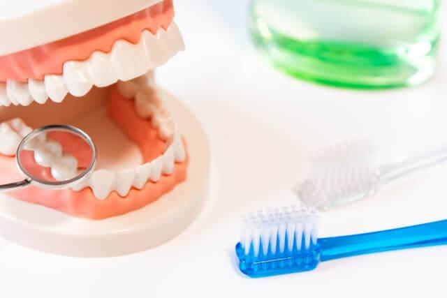 東洋医学の観点からみる口臭の原因と対策方法