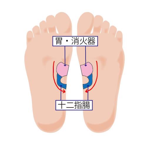 反射区:胃・消火器