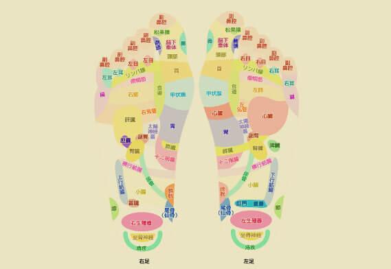 足裏のツボと反射区の違い