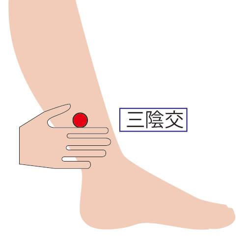 足のツボ・三陰交