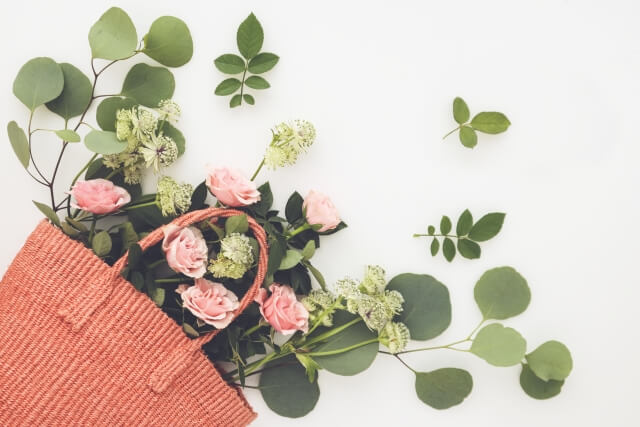 ーカリはインテリアに最適!おしゃれな葉っぱと香りを楽しもう!
