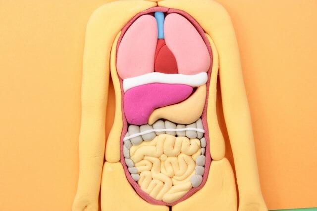 【生活習慣病】簡単にできるオススメの生活習慣病を予防する方法