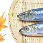 青魚に含まれるEPA・DHAは高血圧や動脈硬化に効果的!EPA、DHAの作用と上手な摂取方法とは?