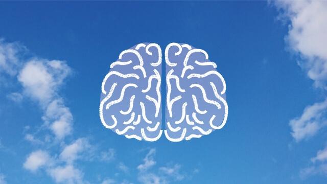 DHAは脳に必須の栄養素