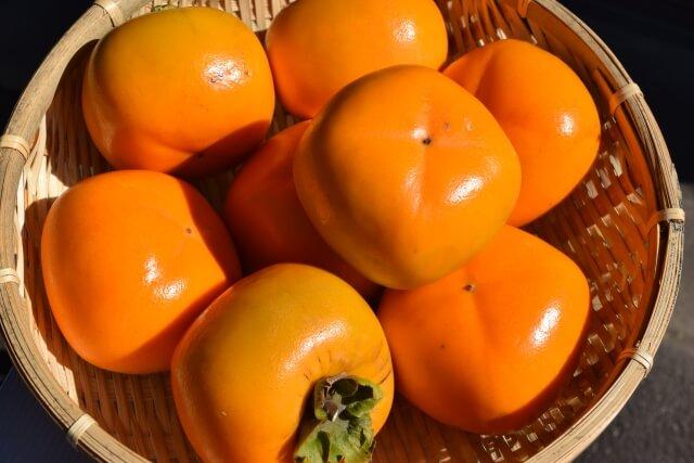 なんでこんなに栄養のある「柿」を食べないの!?フルーツの隠れた王様「柿」の魅力