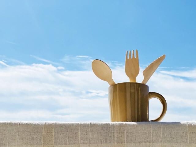 ビーガンは食事だけでなく生活にも規制をともなう新しいライフスタイル